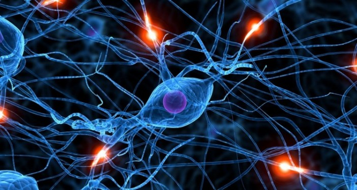 Brain-Synapse-Memory-Engineering-long-term-molecular-neuroscience-750x400